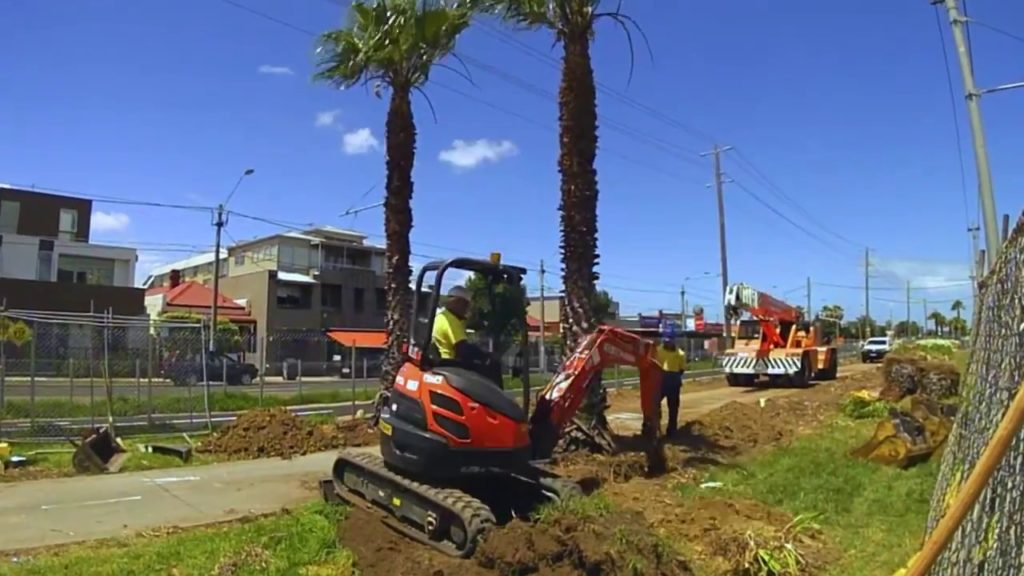 Palm Tree Removal-Kendall West FL Tree Trimming and Stump Grinding Services-We Offer Tree Trimming Services, Tree Removal, Tree Pruning, Tree Cutting, Residential and Commercial Tree Trimming Services, Storm Damage, Emergency Tree Removal, Land Clearing, Tree Companies, Tree Care Service, Stump Grinding, and we're the Best Tree Trimming Company Near You Guaranteed!